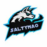 Salty Nao profile picture